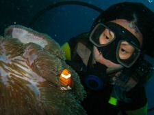 Up and personal with a Nemo fish whilst diving in Redang