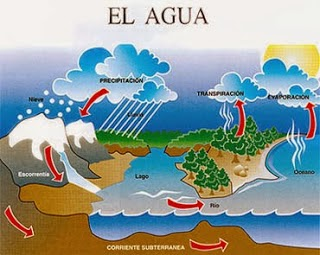 http://www.juntadeandalucia.es/averroes/~cepco3/escuelatic2.0/MATERIAL/FLASH/Conocimiento%20del%20Medio/El%20Ciclo%20Hidrol%C3%B3gico.swf
