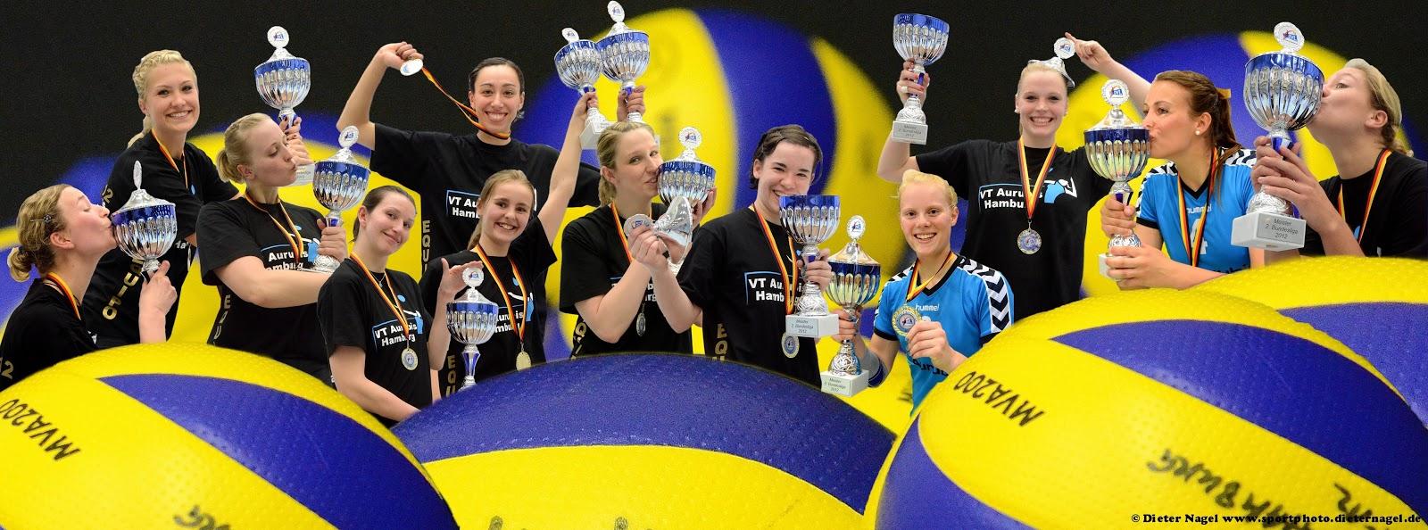 volleyball 2 bundesliga nord