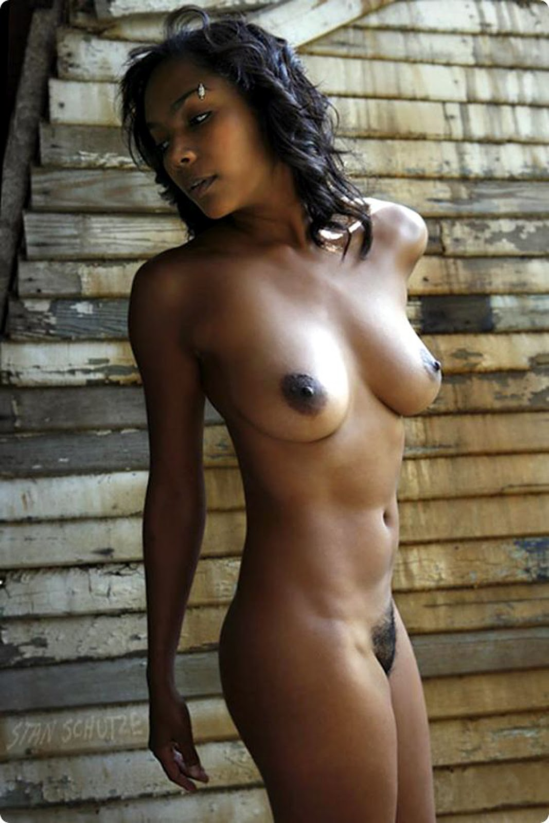 Sexy ebony nude models are