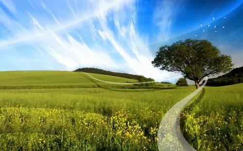 Dream Nature Wallaper