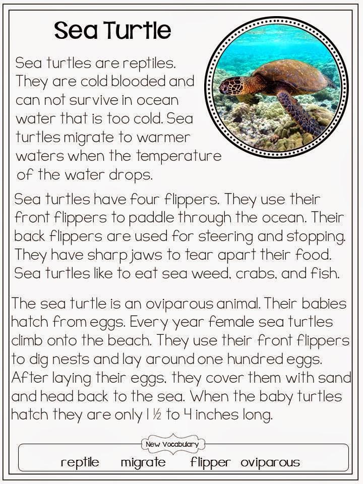 http://www.teacherspayteachers.com/Product/Sea-Turtles-Common-Core-Classroom-248492