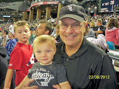 At the White Sox game