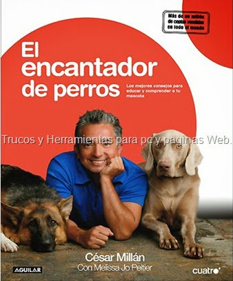 Image Result For Cesar Millan How