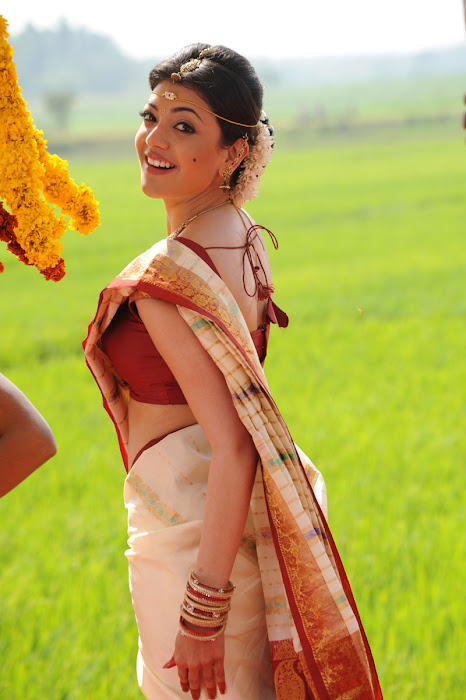 kajal agarwal saree from mrperfect movie cute stills