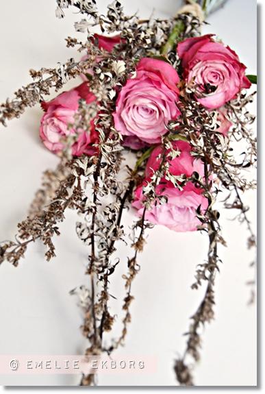 vilda buketter, vilda blommor och rosor, ogräs i buketter, wild  bouquets, wild flower bouquet, pink grey bouquet, weeds in bouquets, rosa grå bukett, rsa rosor, pink roses, amalia ros, amalia rose