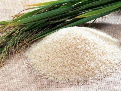 Cách chữa viêm loét dạ dày bằng gạo nếp hiệu quả