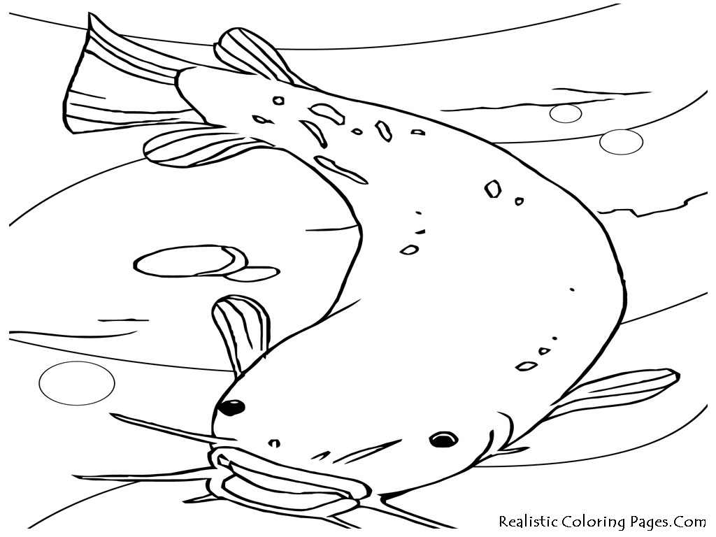 dog coloring pages realistic fish - photo#9