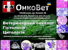 Діагностика та лікування раку у домашніх тварин в м.Києві.
