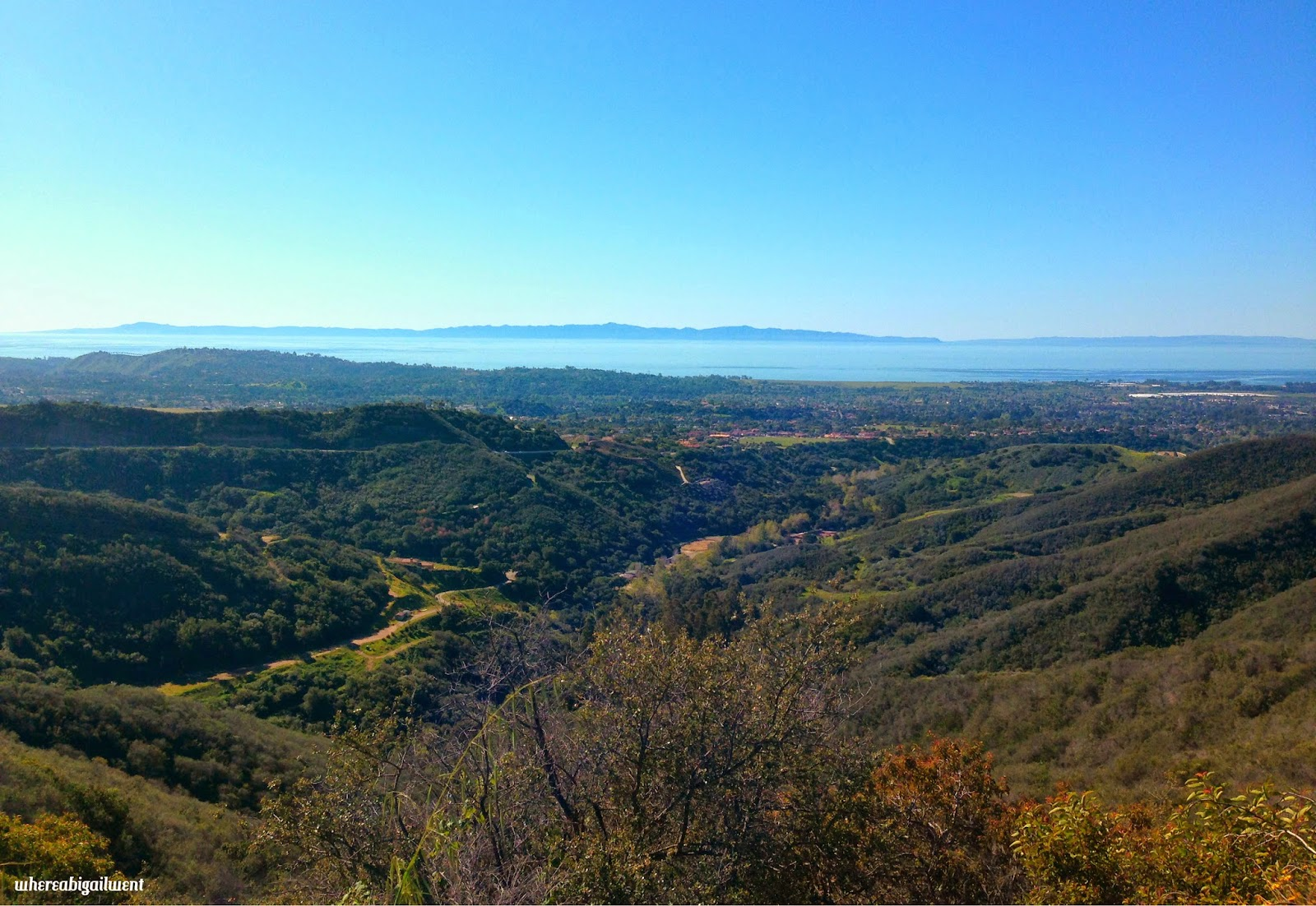 Los Padres National Park vista