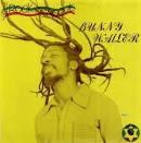 BUNNY WAILER LP(MERENGUEI)