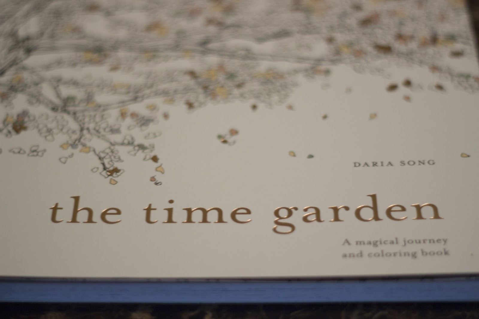 Book Review The Time Garden A Magical Journey And Coloring By Daria Song