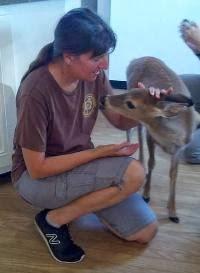 Volunteering at AARK Wildlife