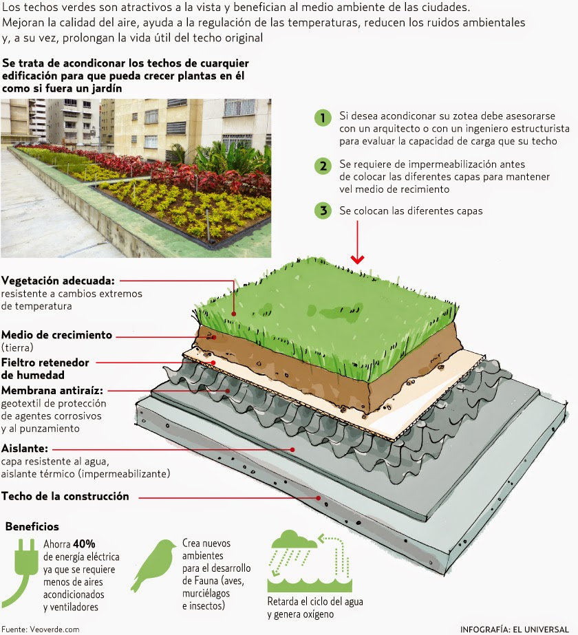 Lora verde techos verdes - Cubiertas vegetales para tejados ...