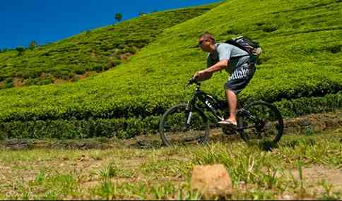 Bersepeda Untuk Menurunkan Kegemukan