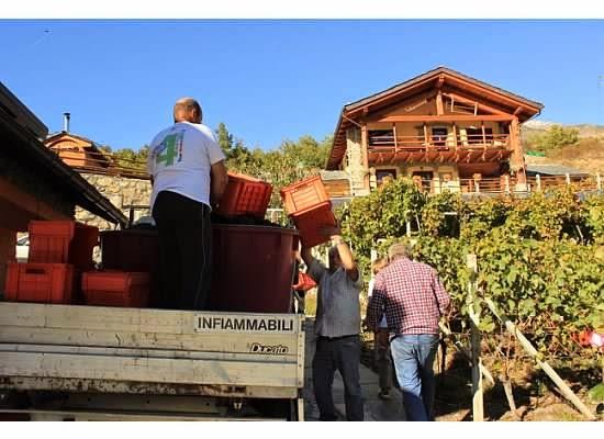 agriturismo la viggni de crest winemaking