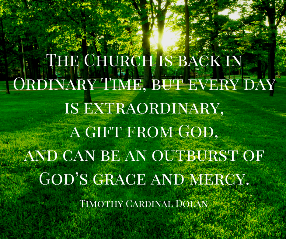 Saints 365: There's Nothing Ordinary about Ordinary Time