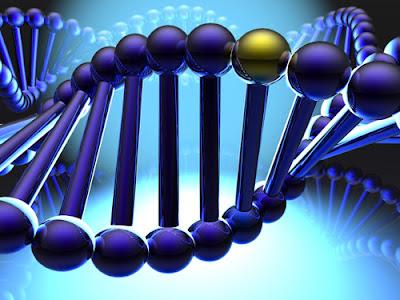 Mutações ajudaram na Evolução?