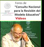 Videos FOROS DE CONSULTA