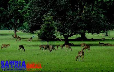 Wisata Kawasan Jakarta