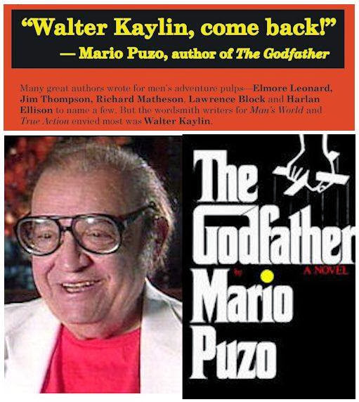 mario puzo essays Book review | essay good paperback vibrations by dwight garner feb 8, 2018 continue reading the main story share this page continue reading the main story photo.