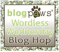 BlogPaws Wordless Wednesday badge.