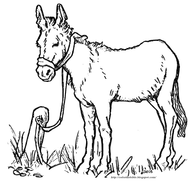donkey coloring pages autos post