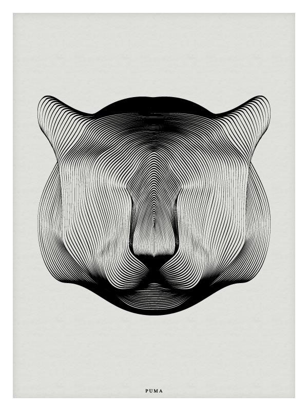 nuncalosabre. Animals in Moiré - Andrea Minini