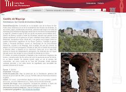 Lista Roja del Patrimonio: Castillo de Mayorga (San Vicente de Alcántara)