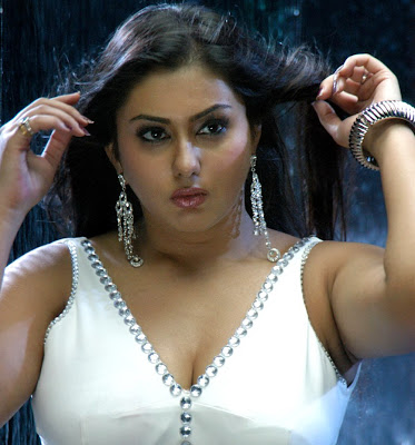 Tamil Talugu Hot Actress Namitha