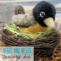 birds and nests sensory bin