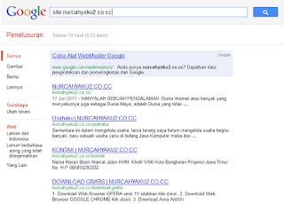 Domain CO.CC sudah terindex kembali di Google