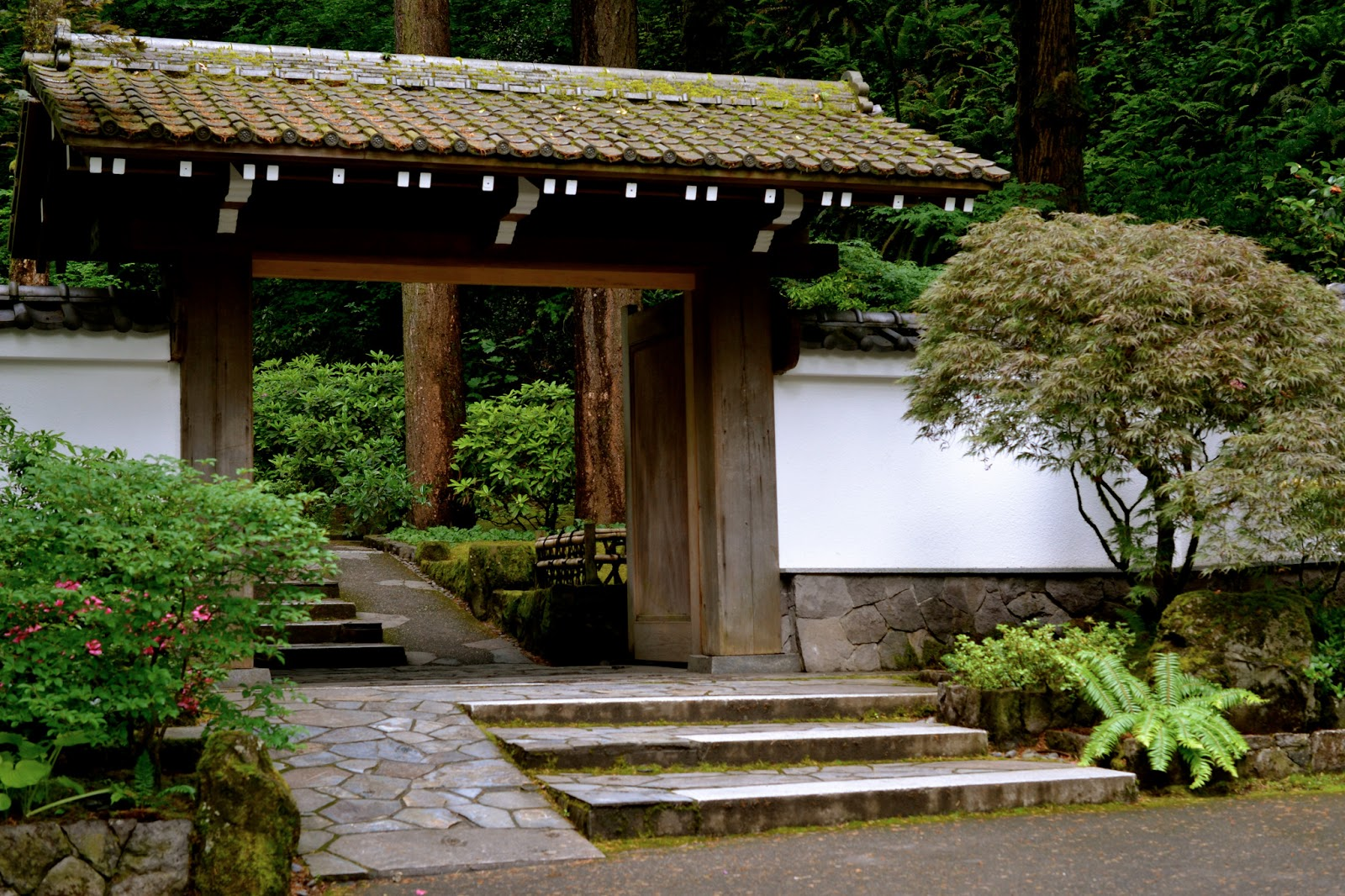 Bonney Lassie Washington Park 39 S Japanese Garden In Portland