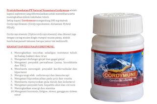 Cordymune Nasa