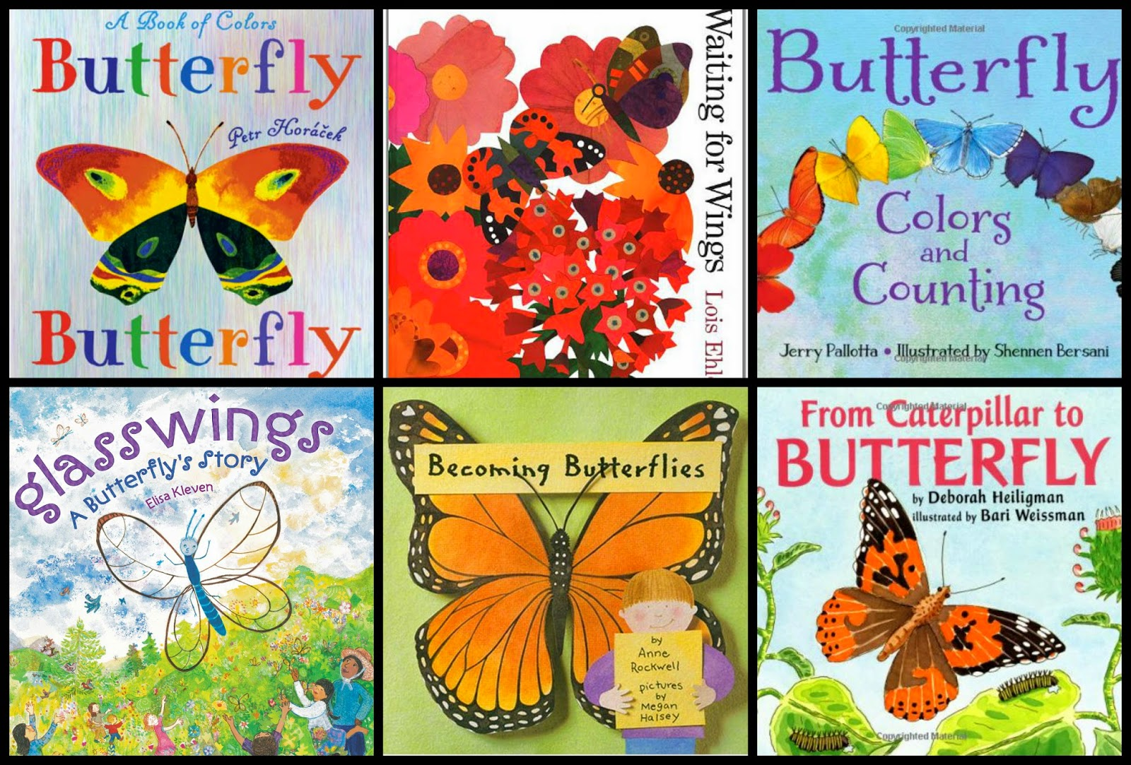 And Of Course, Books To Help Us Use Our Imaginations! What Would You Do If  You Had Wings?!