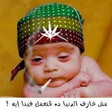 نكت نكت نكت funy arab talke