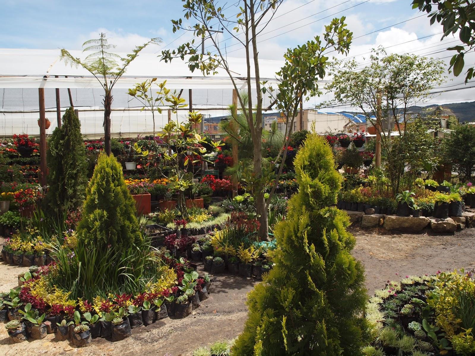 Colombian Theme Park   Adoption