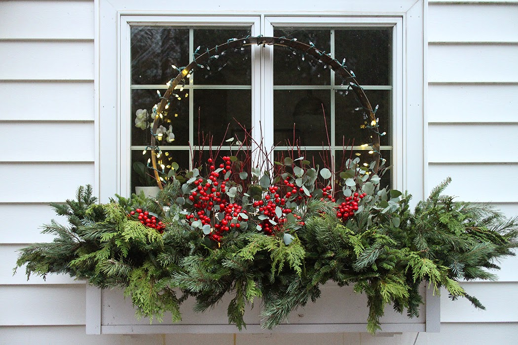 holiday window box with steel ring: The Impatient Gardener