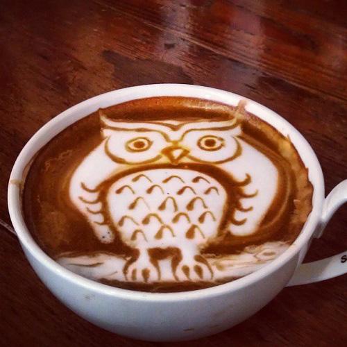 my owl barn owl latte art collection. Black Bedroom Furniture Sets. Home Design Ideas