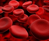 Perbedaan Eritrosit, Leukosit dan Trombosit