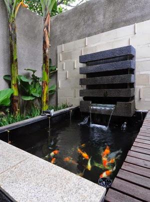 bakki shower untuk filter kolam ikan - dunia akuarium