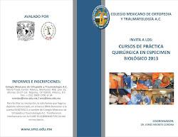Cursos de práctica quirúrgica en espécimen biológico