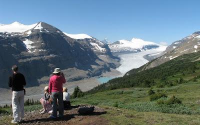 Parker Ridge Trail. Udsigt til Saskatchewan gletsjeren.