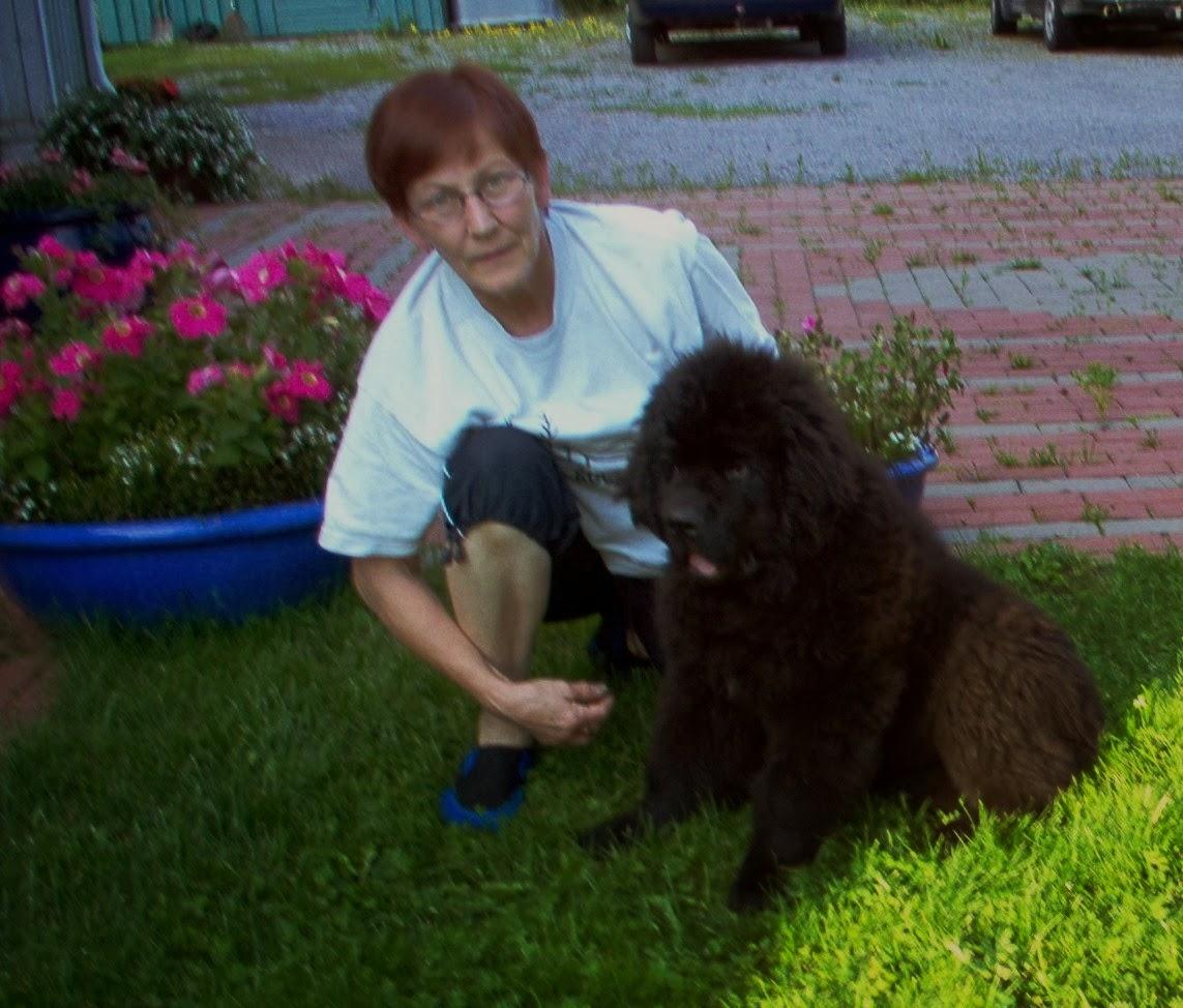 MAMMA JA AARON VAUVA V.2000