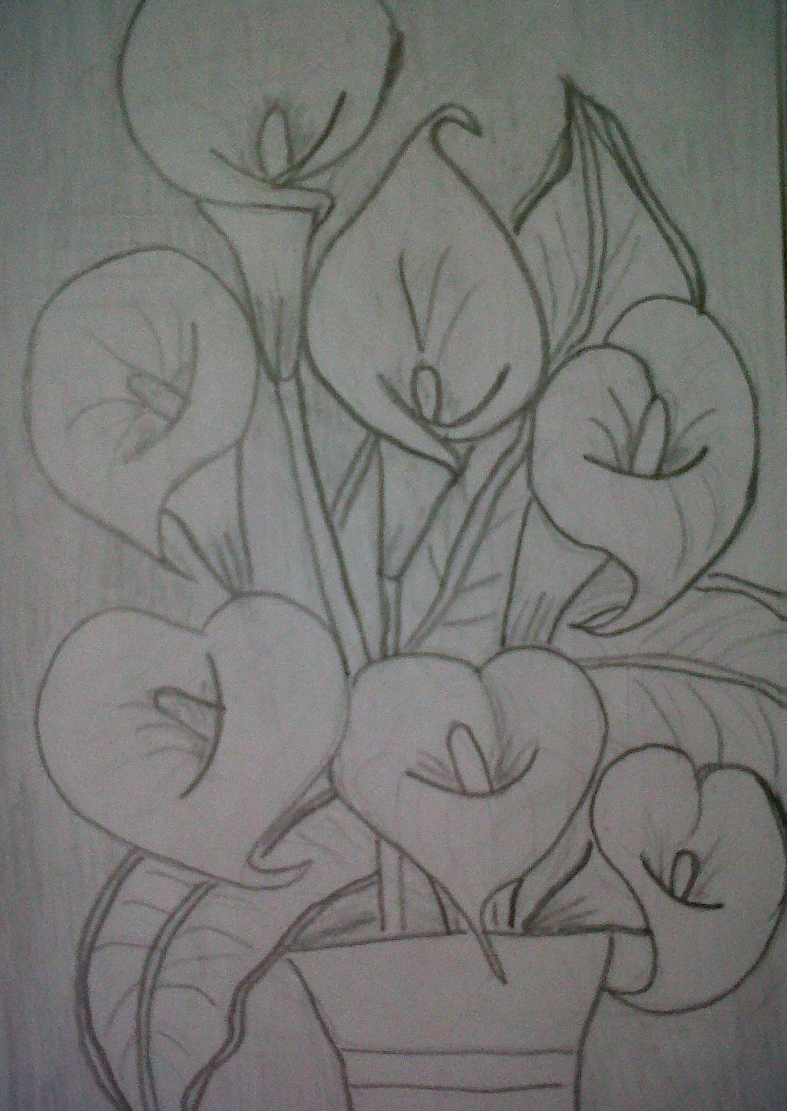 Flores De Alcatraces Para Dibujar
