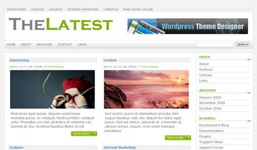 Download The Latest WordPress theme