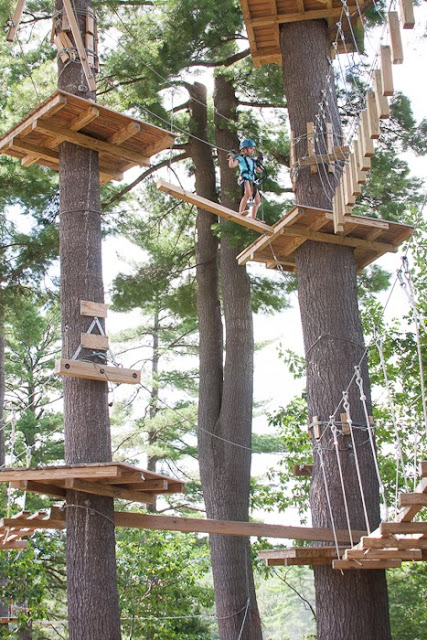 little girl high in the trees on a ropes course