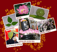 peopel also offer lotus, dhatura, bel-leaves, aakamda flower to mahadev