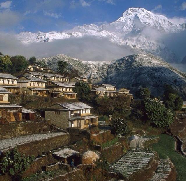 Niraj Govinda Shrestha