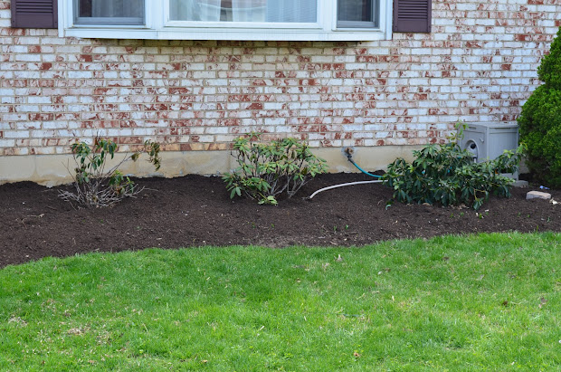front yard landscaping spring